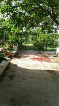 فروش فوری باغ ویلا در چهارباغ