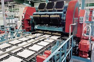 خط تولید شانه تخم مرغ ، کفی لبنیات و شانه میوه