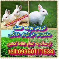 فروش یونجه خشک مخصوص برای خرگوش و پرنده