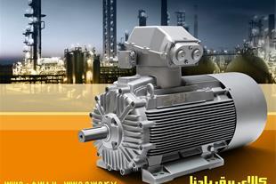 الکترو موتور زیمنس siemens motors