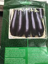 بذر گلخانه ای بادمجان لانگو