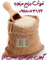 فروش برنج وچای شمال