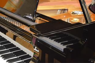 خرید و فروش پیانو ، انواع پیانو آکوستیک و دیجیتال