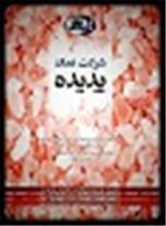 شرکت نمک پدیده گرمسار (سهامی خاص) 09120811829