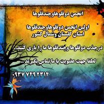 انجمن حمایت از دوقلو و چندقلو های استان گلستان