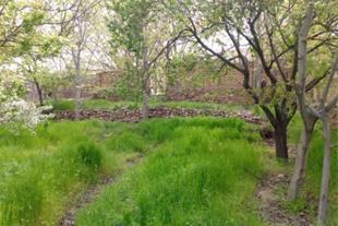 فروش باغ در هفت سنگان