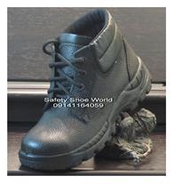 کفش نگهبان