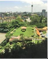 فضای سبز سقفی