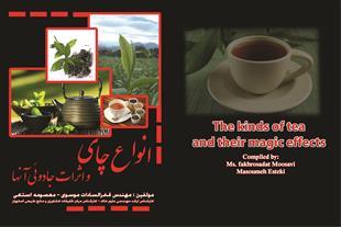 انواع چای و اثرات جادویی آنها