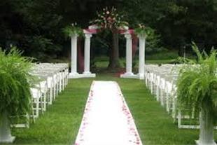 تشریفات مجالس عروسی |خدمات مجالس عروسی