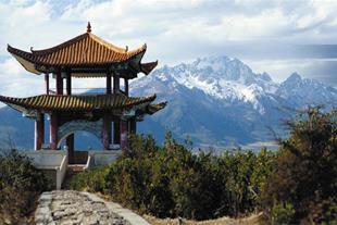 مترجم برای مسافران تجاری به مقصد چین