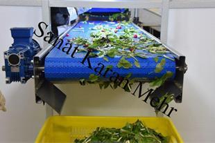 دستگاه شستشوی میوه و سبزیجات - 1