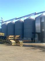 ترخیص تخصصی غلات از گمرکات شمال کشور