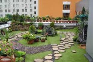اجرای بام سبز roof garden