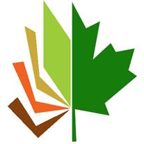 شرکت چوب ترمووود بست چوب