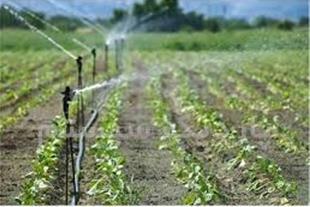 فروش 6.5 هکتار زمین کشاورزی با مجوز گاوداری