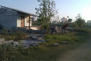 زمین فروشی با متراژ 2000متر مربع 26 متر بر دریا