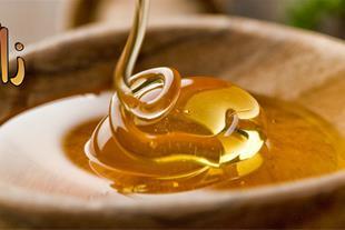 فروش عسل انگبین درجه یک در کرمان