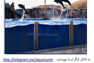 طراحی دلفیناریوم ، پارک آبی ، باغ پرندگان، آبنما