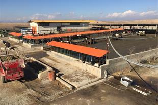 فروش یا معاوضه گاوداری صنعتی شیری در آبیک قزوین