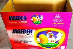 فروش تخم مرغ صادراتی