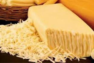 تولید پنیر پیتزا حلب ، بسته بندی و فله