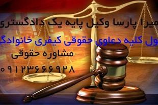وکیل دادگستری ، وکیل دعاوی ، وکالت