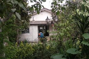 نمای خانه از حیاط