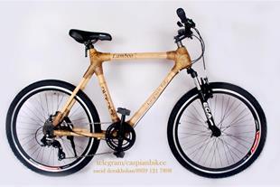فروش دوچرخه بامبو