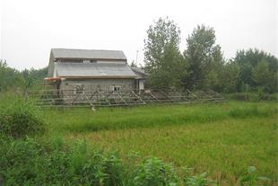 فروش دو خانه روستایی در سیاهکل