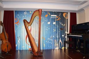 آموزش چنگ (هارپ) در آموزشگاه موسیقی آزاده - 1