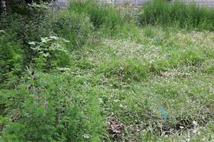 فروش یک قطعه زمین با جواز ساخت 160 متر در چالوس