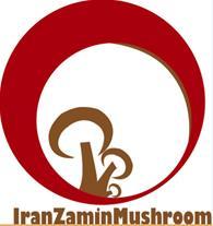 فروش کمپوست قارچ دکمه ای با کیفیت عالی و خاک پوششی