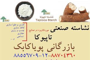 ضد آب کردن کاغذ و مقوا-نشاسته کاتیونیک تاپیوکا