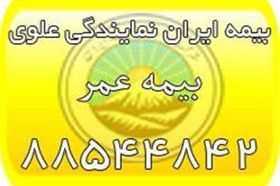بیمه عمر ایران (بیمه ایران نمایندگی علوی )