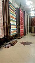 تولید رگال فرش ، کتابی ریلی و نمایشگاهی رگال پادری