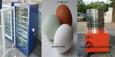 فروش دستگاه جوجه کشی و تخم نطفه دار تمامی طیور - 1
