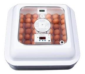 فروشنده دستگاه جوجه کشی 48 تایی ، خرید دستگاه جوجه - 1