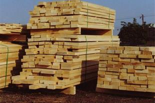 چوب بری خرمی - فروش چوب روسی