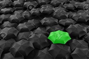 فروشگاه اینترنتی چتر سبز