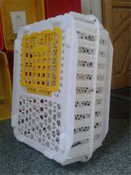 قفس حمل بلدرچین - 1
