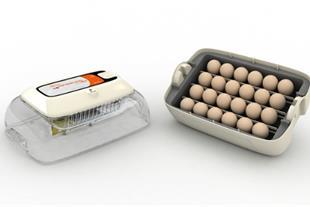 دستگاه جوجه کشی 24 تایی کره ای