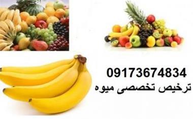 ترخیص کالا ، ترخیص میوه از بوشهر ، بندر عباس - 1