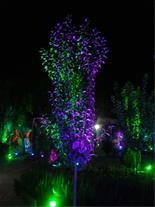 تولید چراغ ال ای دی - نورپردازی فضای سبز