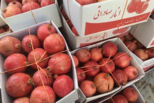 فروش انار - صادرات انار