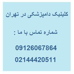 مرکز تشخیصی و آزمایشگاه حیوانات در غرب تهران - 1