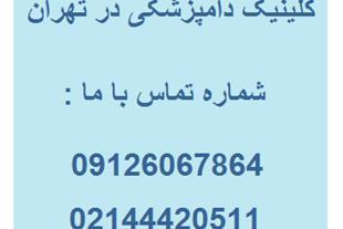 مرکز تشخیصی و آزمایشگاه حیوانات در غرب تهران