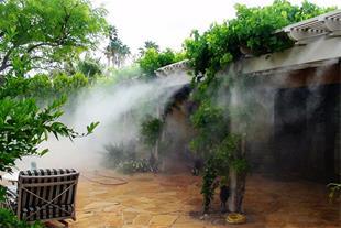 سیستم خنک کننده و رطوبت ساز گلخانه ، پرورش قارچ