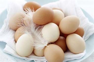 فروش تخم های نطفه دار - 1