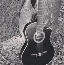 آموزش گیتار و آواز